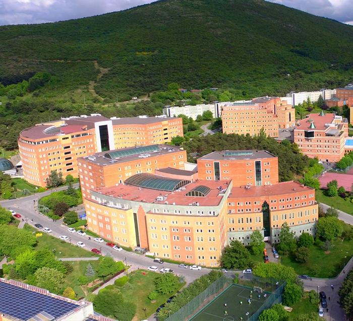 Üniversite Taşımacılığı